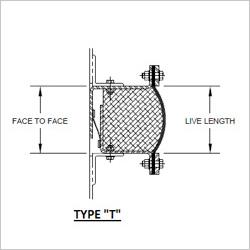 typeT